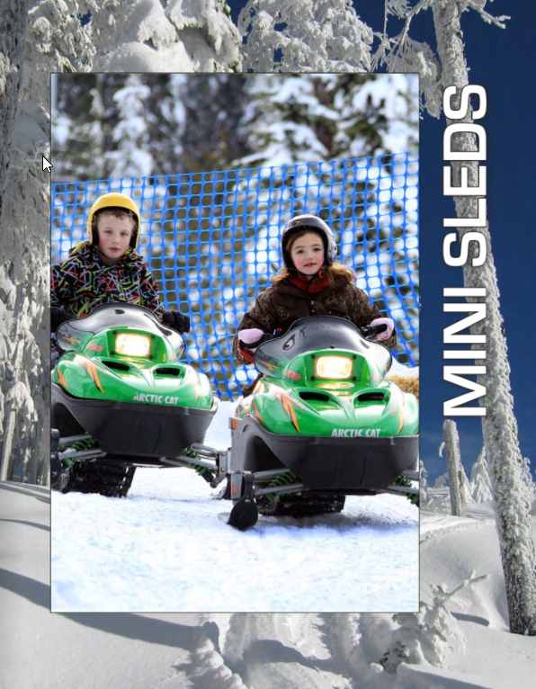 Picture for category Mini Sleds